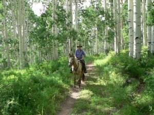 Horseback trail rides La Sal Mountains Moab Utah