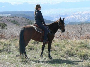 Horseback Rides above Moab Utah