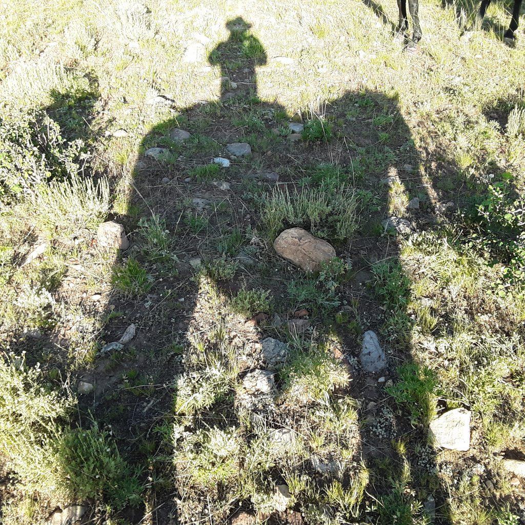 My shadow selfie.